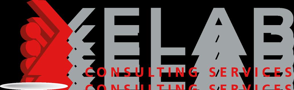 Xelab Consulting Service